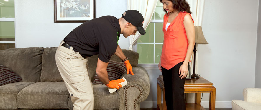 Howell, NJ carpet upholstery cleaning